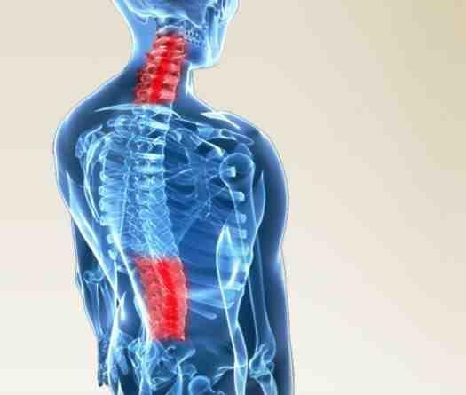 Zdrowy kręgosłup – ćwiczenia fitness